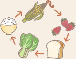 食べ物のローテーション